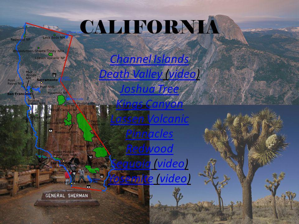 COLORADO Black Canyon of the Gunnison Great Sand Dunes Mesa VerdeMesa Verde (video)video Rocky MountainRocky Mountain (video)video