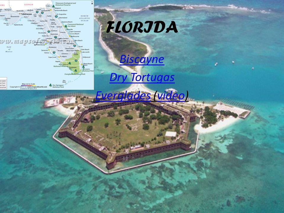 FLORIDA Biscayne Dry Tortugas EvergladesEverglades (video)video