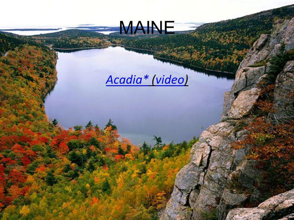 MAINE Acadia*Acadia* (video)video