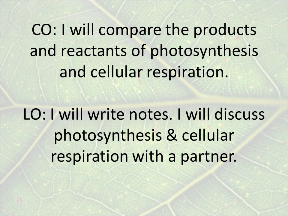 CO: I will compare the products and reactants of photosynthesis and cellular respiration.