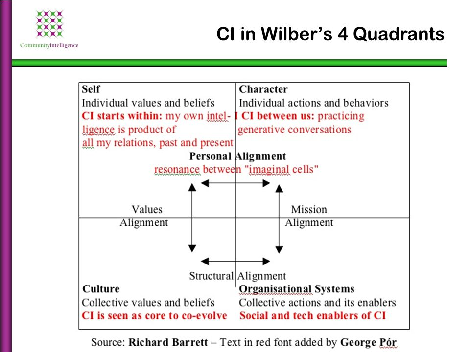 CI in Wilber's 4 Quadrants