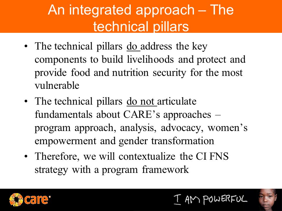An integrated approach – The technical pillars The technical pillars do address the key components to build livelihoods and protect and provide food and nutrition security for the most vulnerable The technical pillars do not articulate fundamentals about CARE's approaches – program approach, analysis, advocacy, women's empowerment and gender transformation Therefore, we will contextualize the CI FNS strategy with a program framework