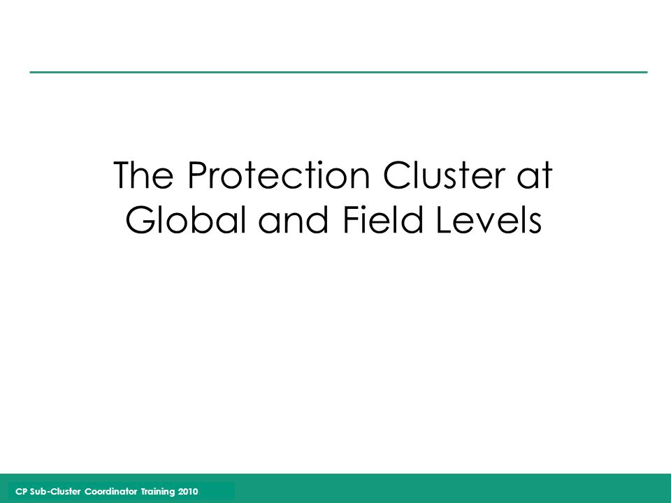CP Sub-Cluster Coordinator Training 2010 The Protection Cluster at Global and Field Levels
