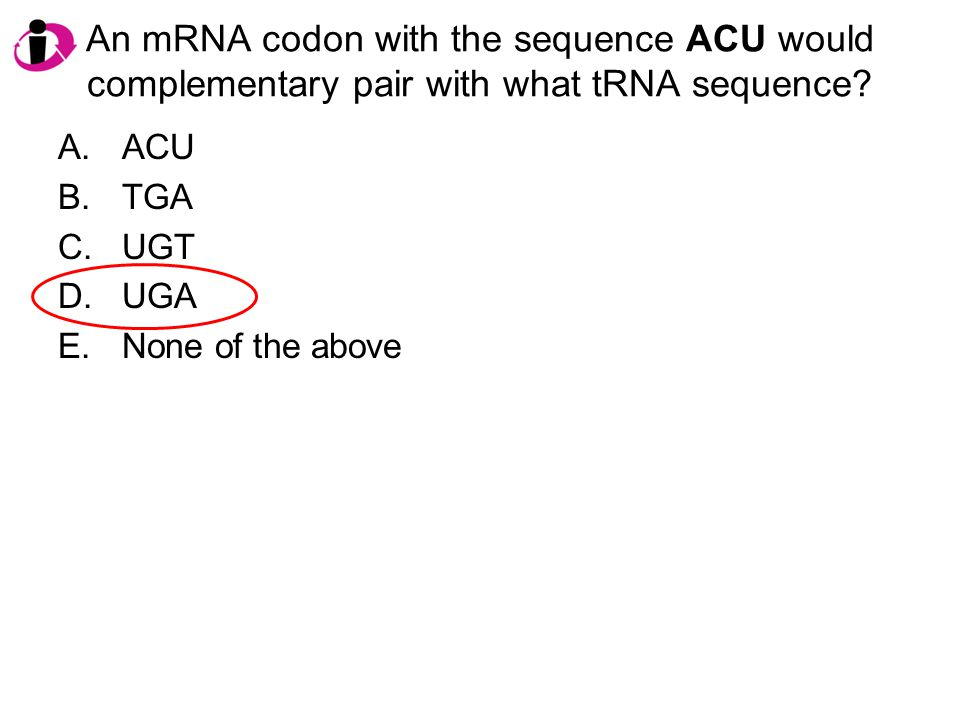 An mRNA codon with the sequence ACU would complementary pair with what tRNA sequence? A.ACU B.TGA C.UGT D.UGA E.None of the above