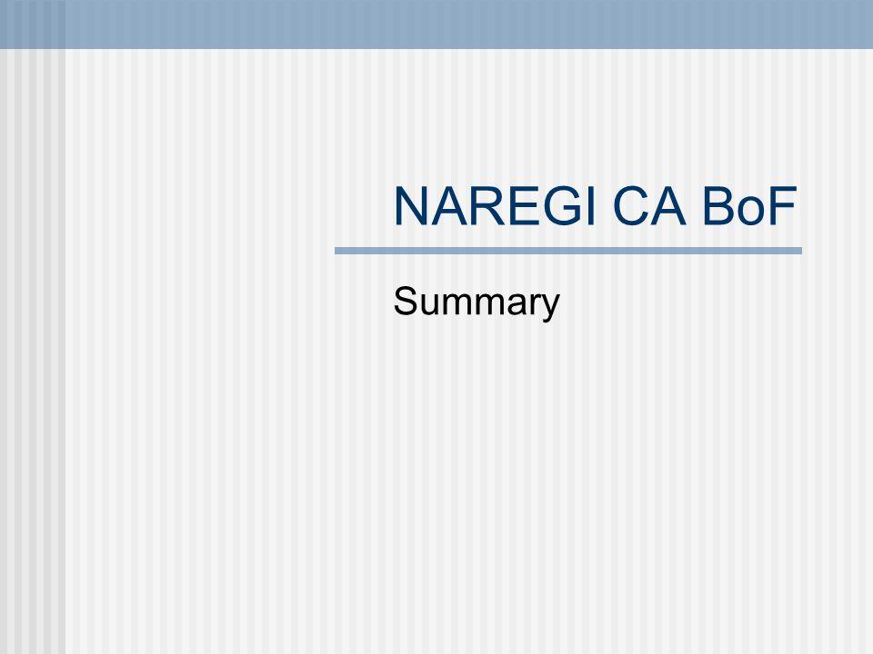 NAREGI CA BoF Summary