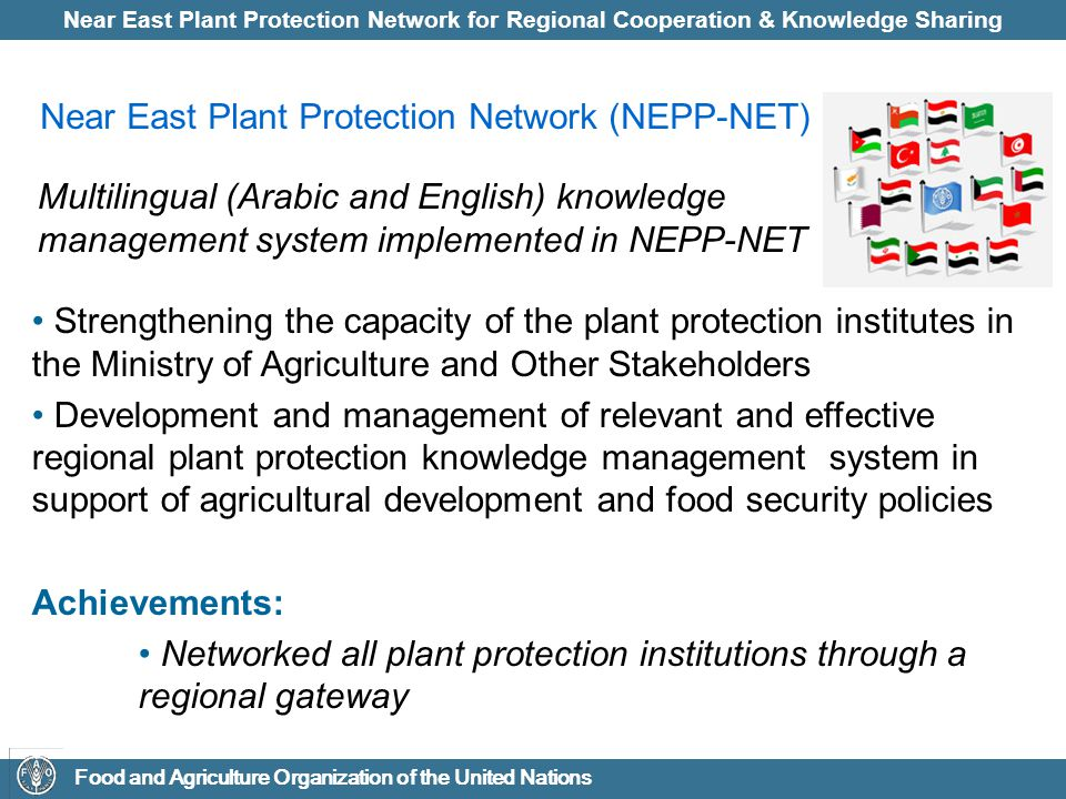 Near East Plant Protection Network for Regional Cooperation & Knowledge Sharing Food and Agriculture Organization of the United Nations Near East Plant Protection Network (NEPP-NET) Strengthening the capacity of the plant protection institutes in the Ministry of Agriculture and Other Stakeholders Development and management of relevant and effective regional plant protection knowledge management system in support of agricultural development and food security policies Achievements: Networked all plant protection institutions through a regional gateway Multilingual (Arabic and English) knowledge management system implemented in NEPP-NET