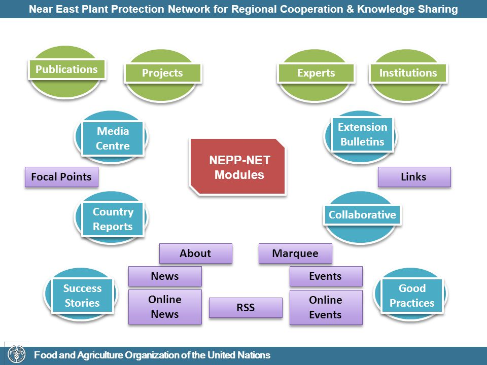 Near East Plant Protection Network for Regional Cooperation & Knowledge Sharing Food and Agriculture Organization of the United Nations News Events Extension Bulletins Media Centre Online News Online Events RSS Collaborative Country Reports Links Focal Points Publications Projects Experts Institutions NEPP-NET Modules Success Stories Good Practices About Marquee