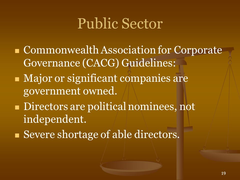 19 Public Sector Commonwealth Association for Corporate Governance (CACG) Guidelines: Major or significant companies are government owned. Directors a