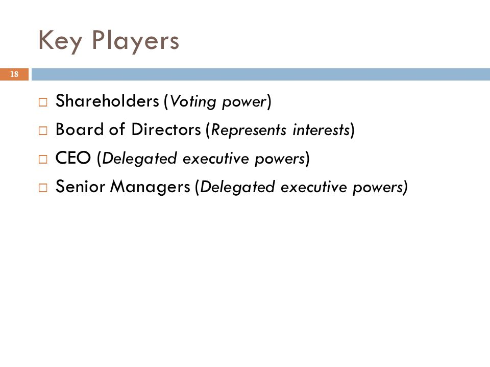 Key Players 18  Shareholders ( Voting power )  Board of Directors ( Represents interests )  CEO ( Delegated executive powers )  Senior Managers (