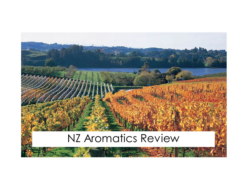 NZ Aromatics Review