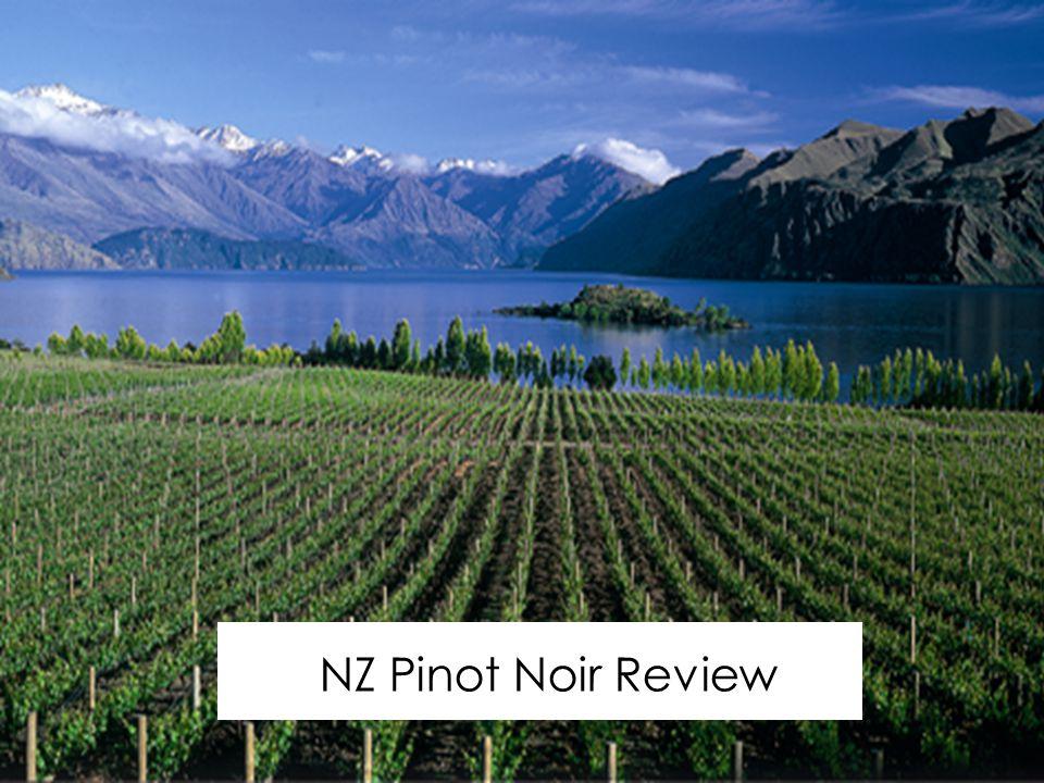 NZ Pinot Noir Review