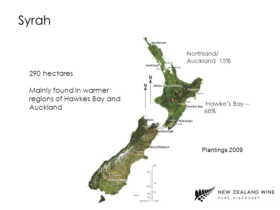 Northland/ Auckland 15% 290 hectares Mainly found in warmer regions of Hawkes Bay and Auckland Syrah Hawke's Bay – 68% Plantings 2009