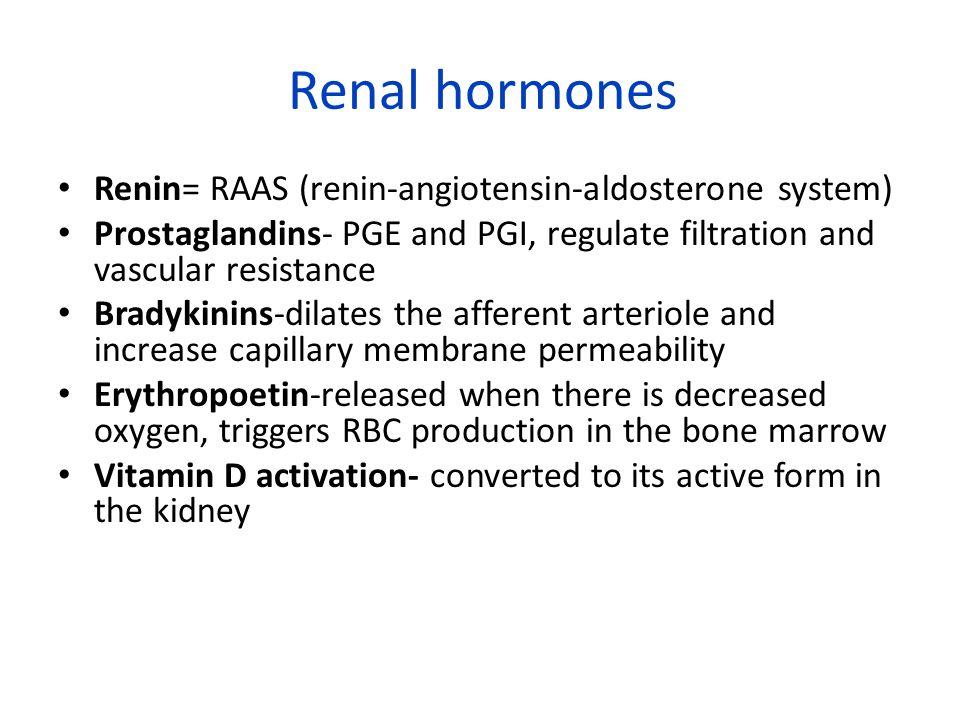Renal hormones Renin= RAAS (renin-angiotensin-aldosterone system) Prostaglandins- PGE and PGI, regulate filtration and vascular resistance Bradykinins