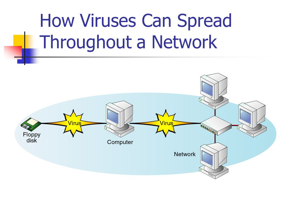 How Viruses Can Spread Throughout a Network