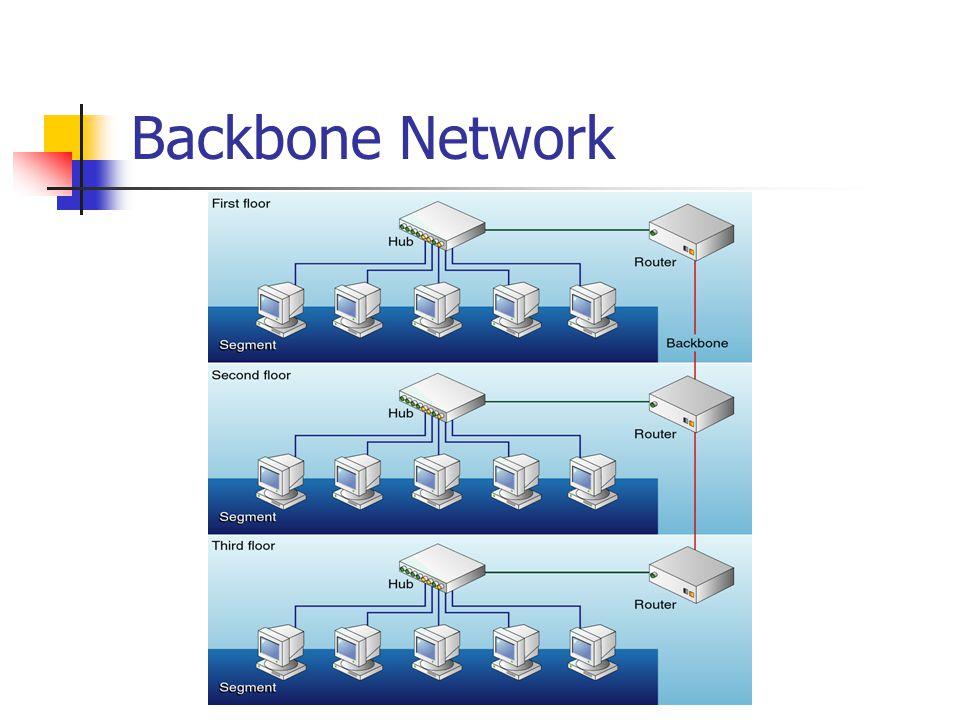 Backbone Network