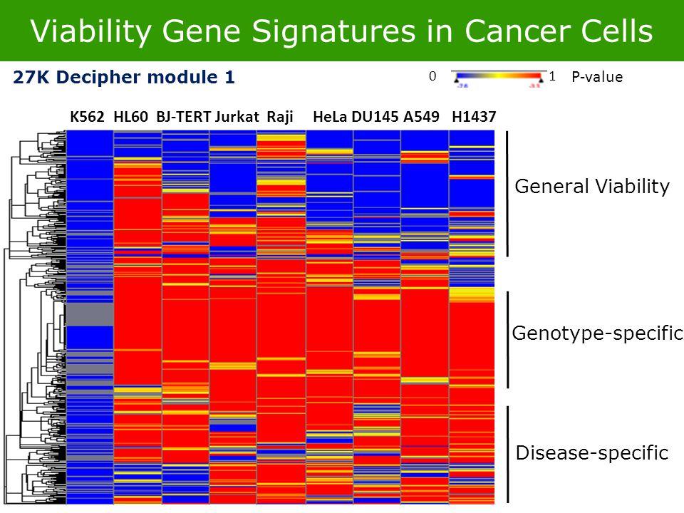 Viability Gene Signatures in Cancer Cells K562 HL60 BJ-TERT Jurkat Raji HeLa DU145 A549 H1437 P-value 01 27K Decipher module 1 General Viability Genotype-specific Disease-specific
