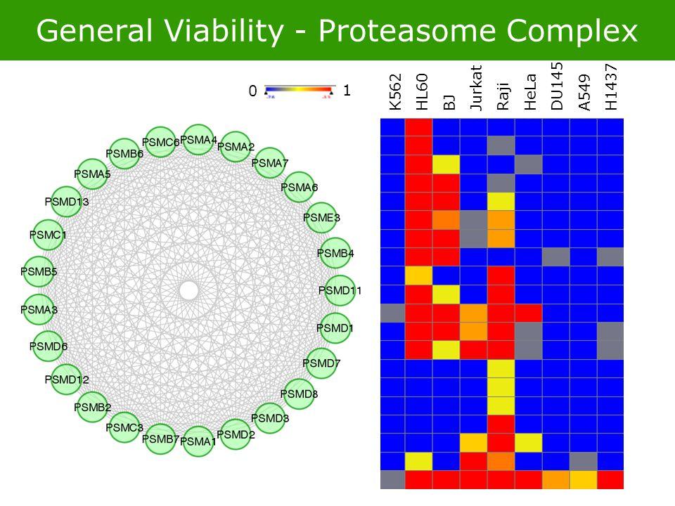 General Viability - Proteasome Complex 0 1 K562 HL60 BJ Jurkat Raji HeLa DU145 A549 H1437