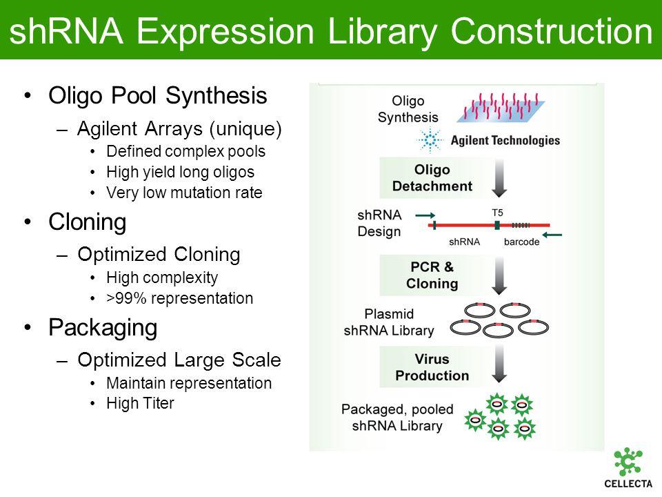 Pooled shRNA Library Screening