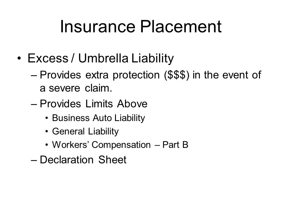 Insurance Placement Excess / Umbrella Liability –Provides extra protection ($$$) in the event of a severe claim.