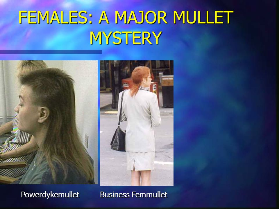 FEMALES: A MAJOR MULLET MYSTERY FEMMULLET There are many varieties of the Femmullet.