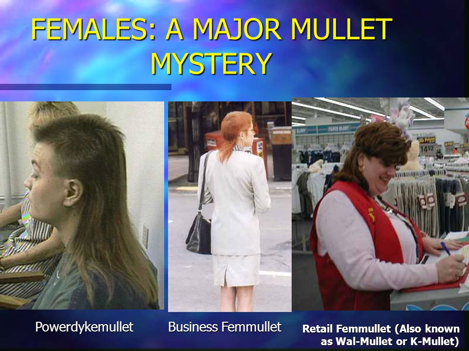 FEMALES: A MAJOR MULLET MYSTERY Business Femmullet Powerdykemullet