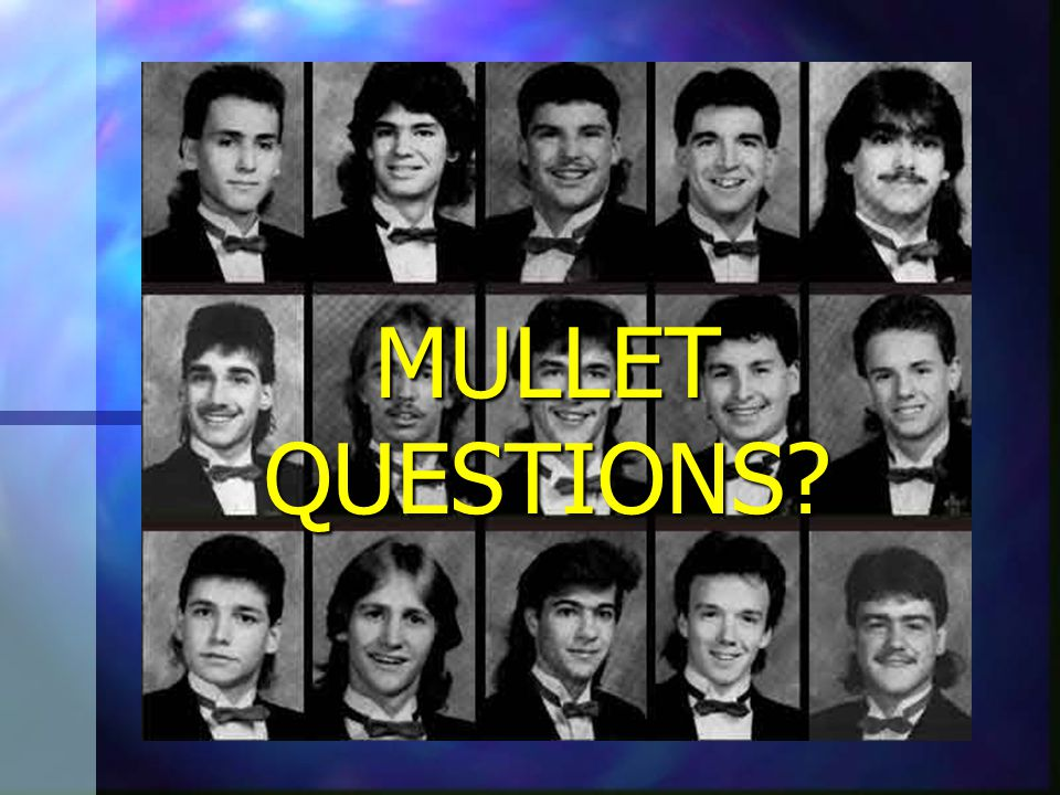 MULLET HOT SPOTS On the web: On the web:www.mulletsgalore.comwww.northamericanmulletpage.comwww.nomullets.com