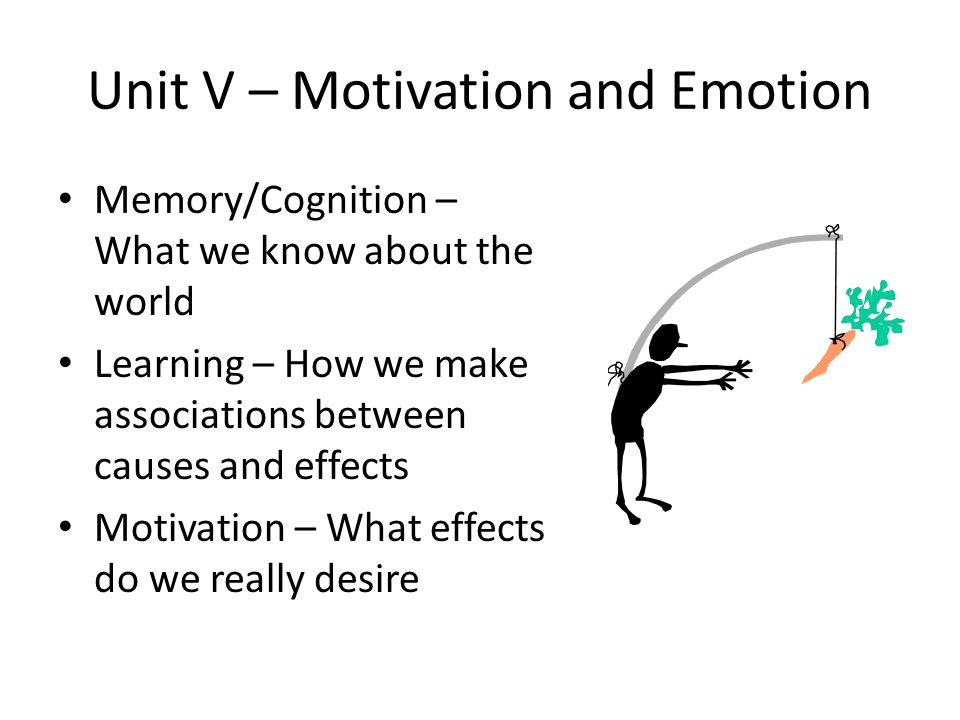 Unit V – Motivation and Emotion Memory/Cognition – What we know about the world Learning – How we make associations between causes and effects Motivat