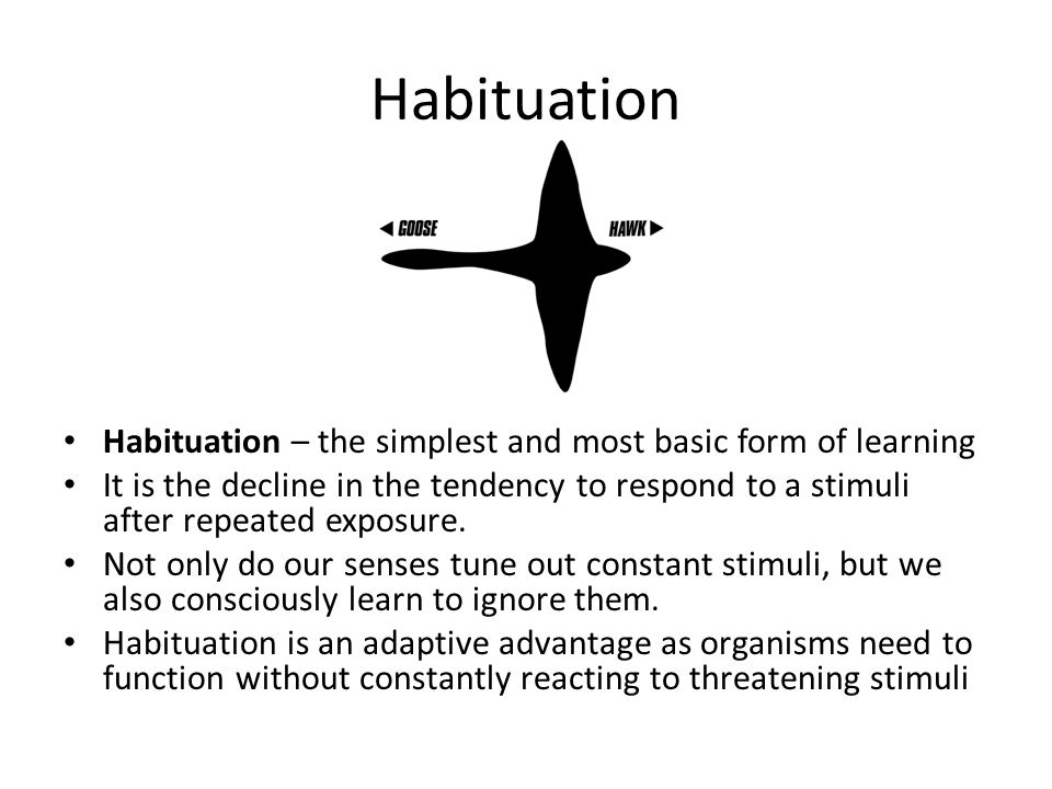 Habituation Habituation – the simplest and most basic form of learning It is the decline in the tendency to respond to a stimuli after repeated exposu