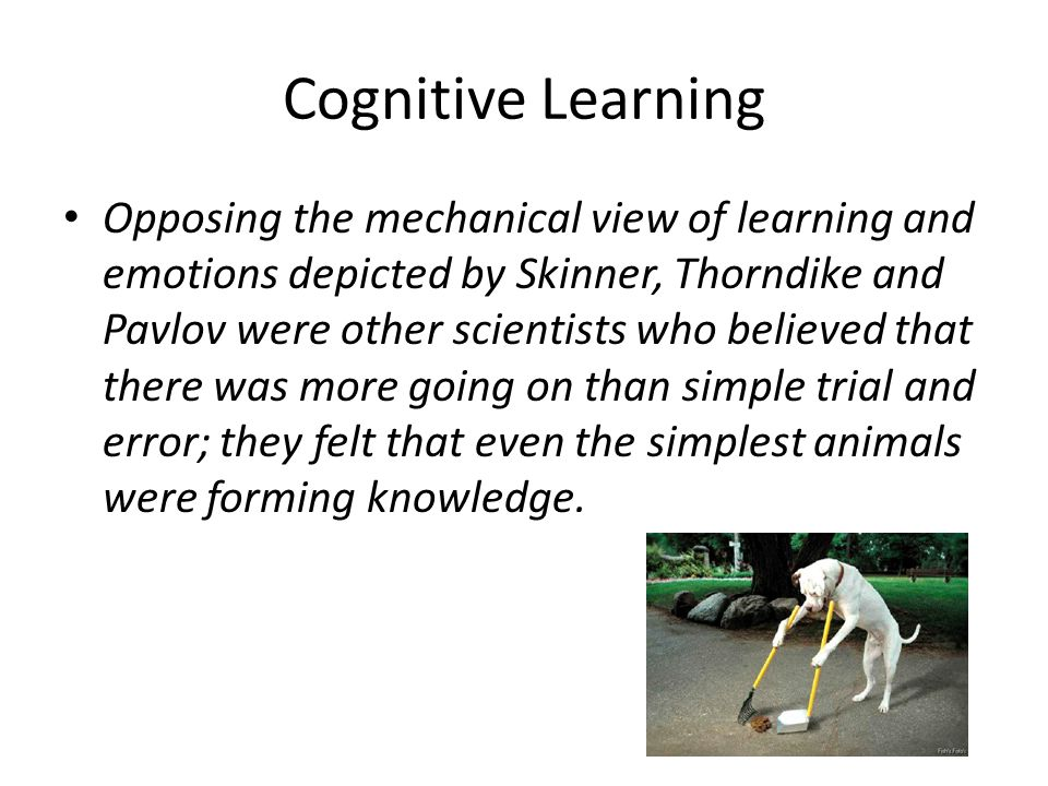 Cognitive Learning Opposing the mechanical view of learning and emotions depicted by Skinner, Thorndike and Pavlov were other scientists who believed