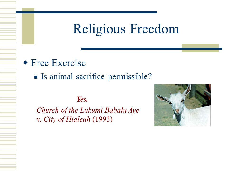 Religious Freedom  Free Exercise Is animal sacrifice permissible? Yes. Church of the Lukumi Babalu Aye v. City of Hialeah (1993)