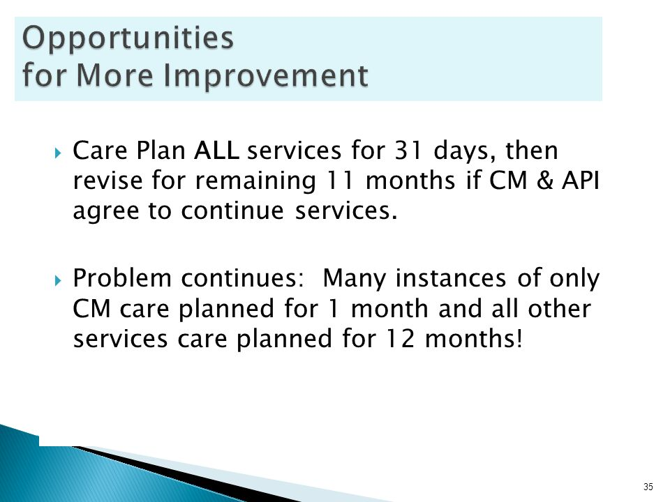  Care Plan ALL services for 31 days, then revise for remaining 11 months if CM & API agree to continue services.