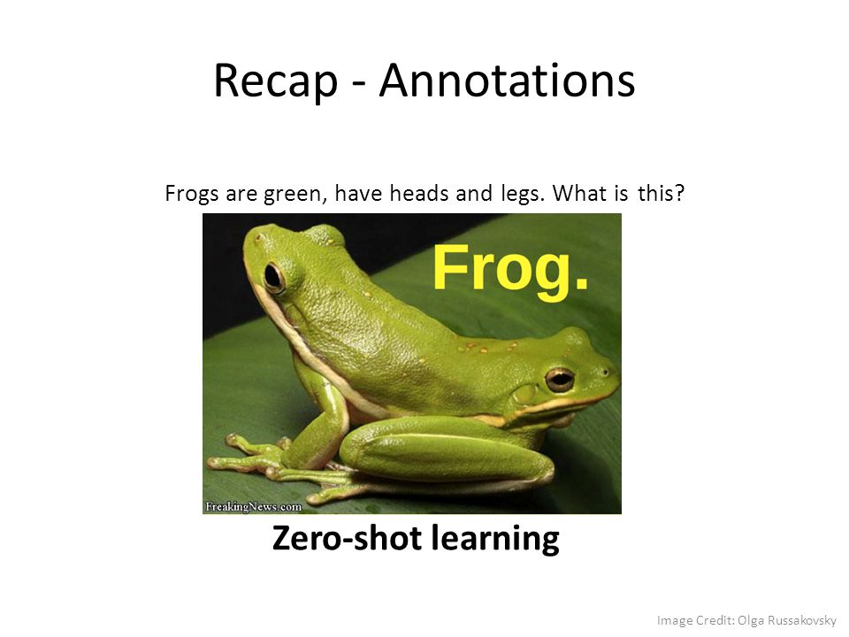 Recap - Annotations Zero-shot learning Frogs are green, have heads and legs. What is this? Image Credit: Olga Russakovsky