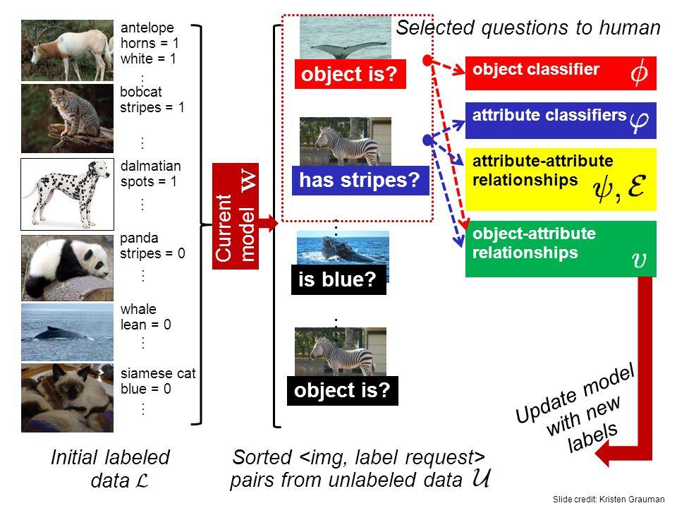 object classifier attribute classifiers attribute-attribute relationships object-attribute relationships object is.
