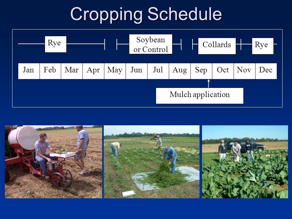 Cropping Schedule JanFebMarMayJunJulSepAprOctNovDecAug Soybean or Control CollardsRye Mulch application