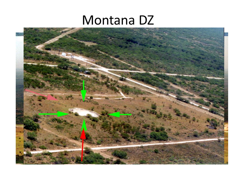 Montana DZ