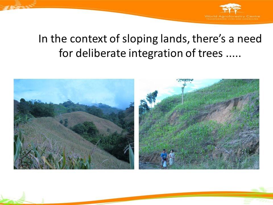 In the context of sloping lands, there's a need for deliberate integration of trees.....