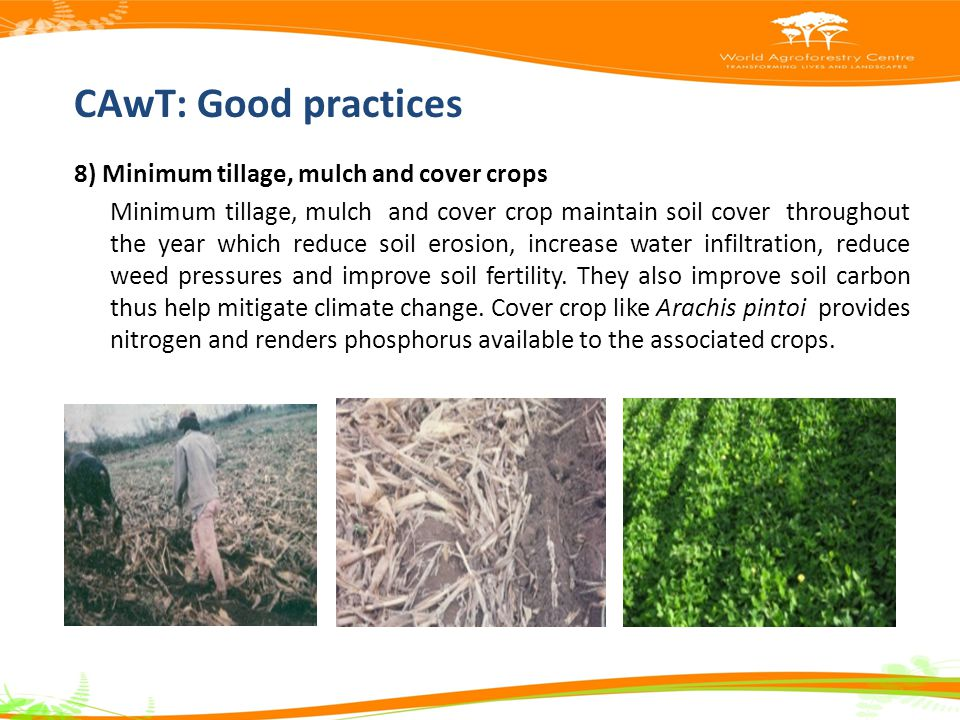 CAwT: Good practices 8) Minimum tillage, mulch and cover crops Minimum tillage, mulch and cover crop maintain soil cover throughout the year which reduce soil erosion, increase water infiltration, reduce weed pressures and improve soil fertility.
