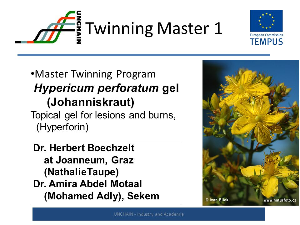 Twinning Master 1 UNCHAIN - Industry and Academia Master Twinning Program Hypericum perforatum gel (Johanniskraut) Topical gel for lesions and burns, (Hyperforin) Dr.