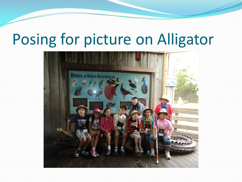 Posing for picture on Alligator