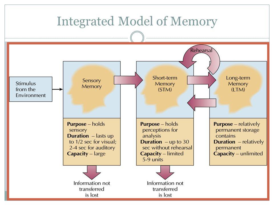 Integrated Model of Memory