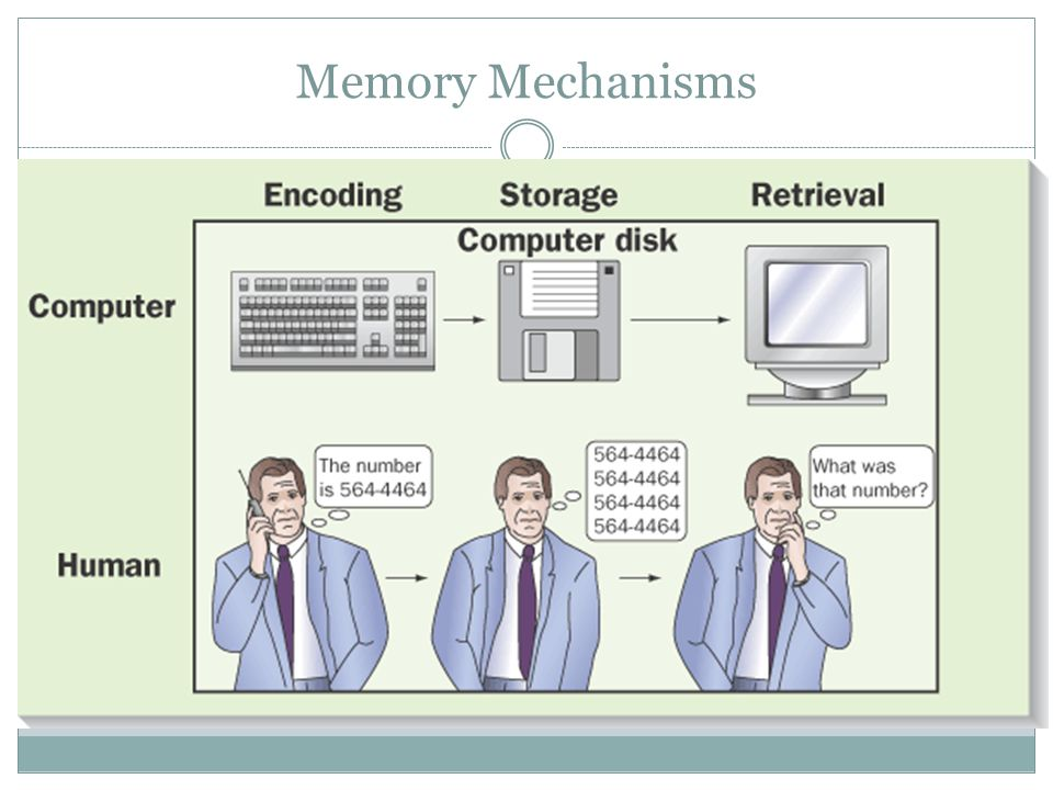 Memory Mechanisms