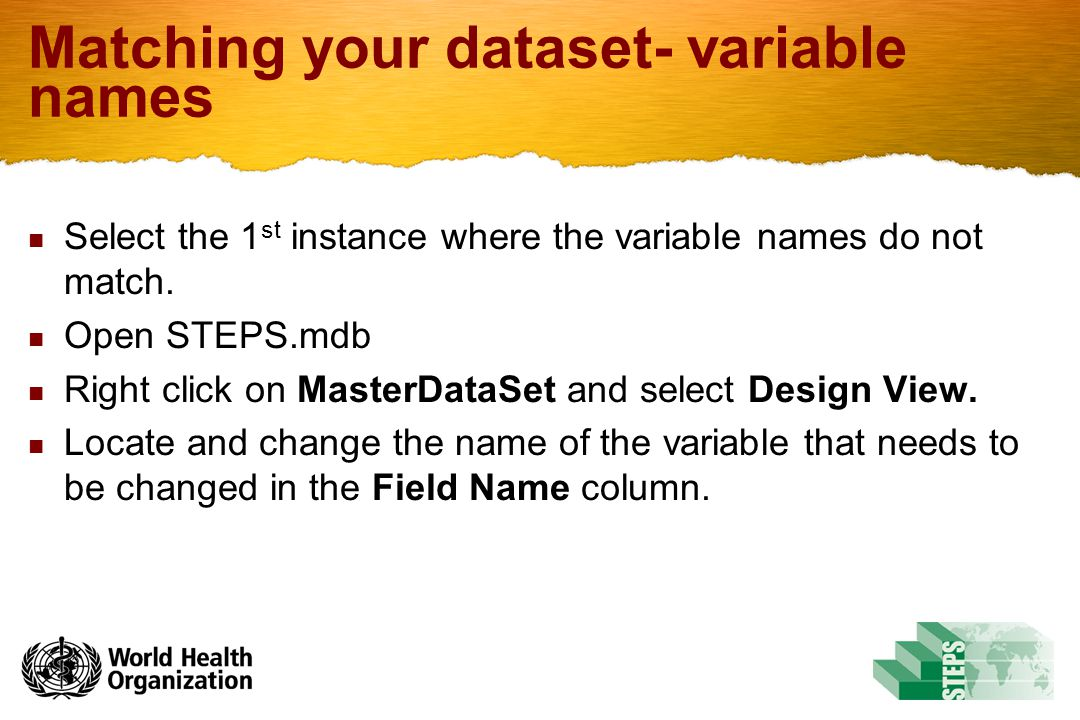 Matching your dataset- variable names Select the 1 st instance where the variable names do not match. Open STEPS.mdb Right click on MasterDataSet and
