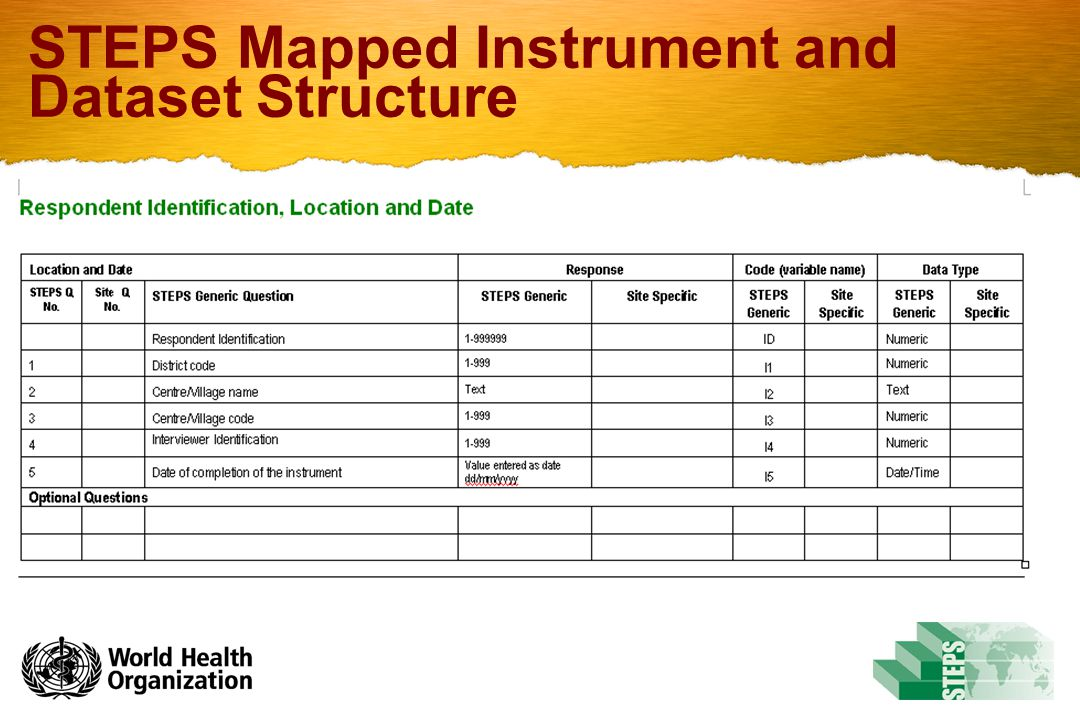 STEPS Mapped Instrument and Dataset Structure