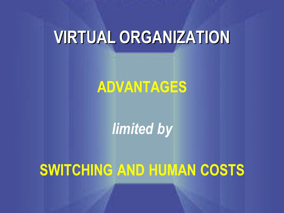 VIRTUAL ORGANIZATION ADVANTAGES limited by SWITCHING AND HUMAN COSTS