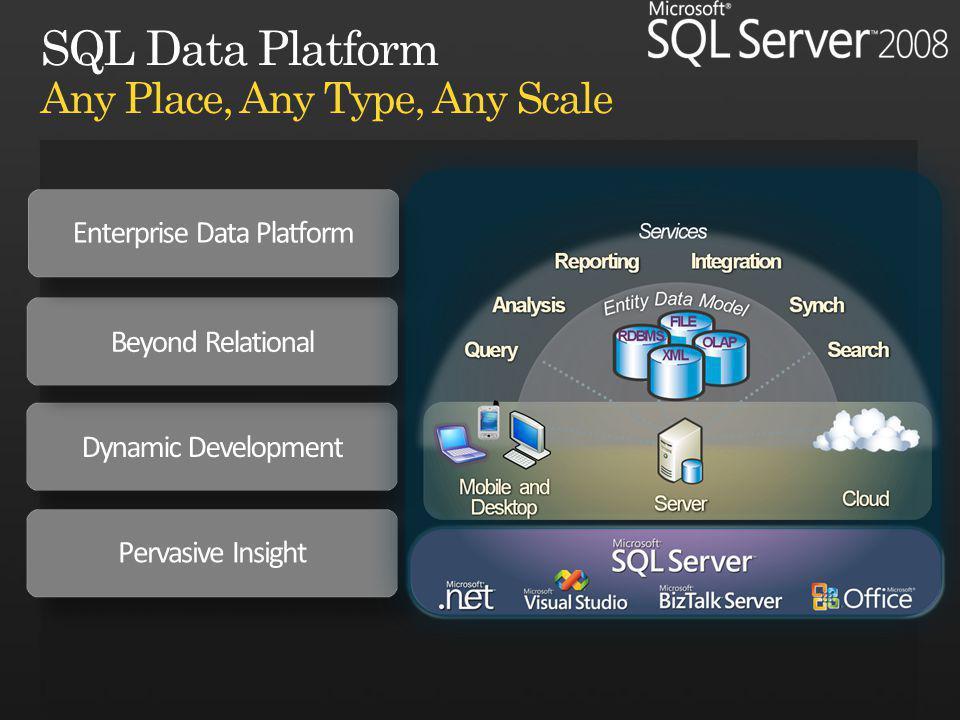 Dynamic Development Beyond Relational Pervasive Insight Enterprise Data Platform