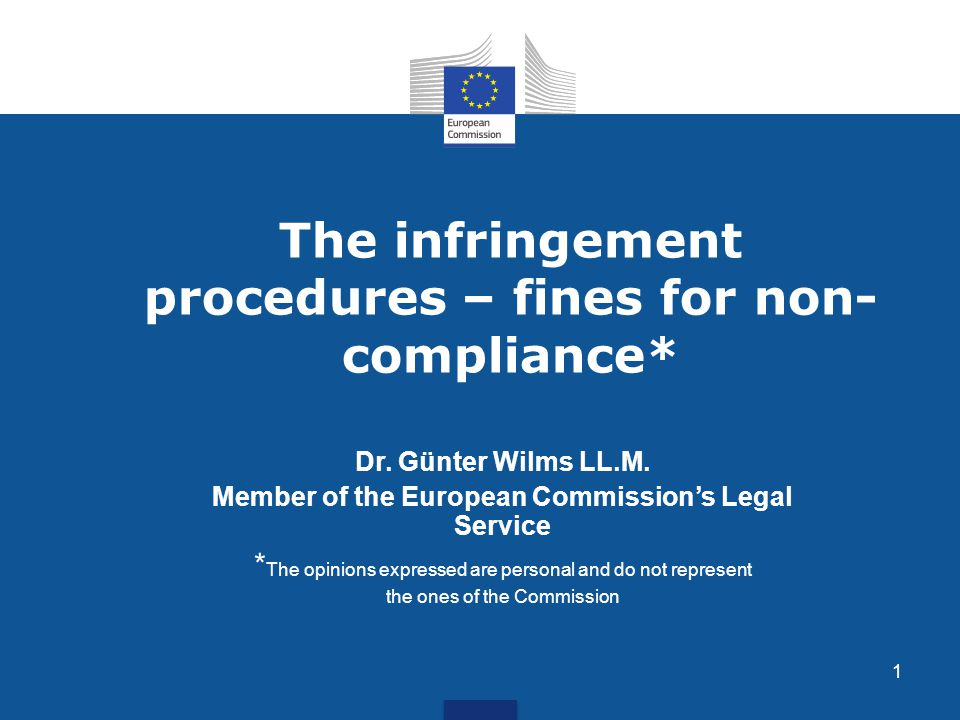 12 III.Second Infringement: History Until 2002 the COM asked the Court only to impose daily penalty payments Result: MS complied only at a late stage Purpose of financial sanctions was re-examined