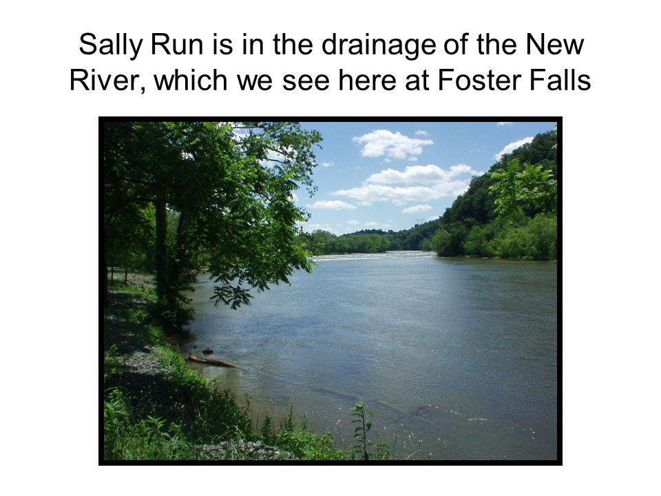 Sally Run is in the drainage of the New River, which we see here at Foster Falls