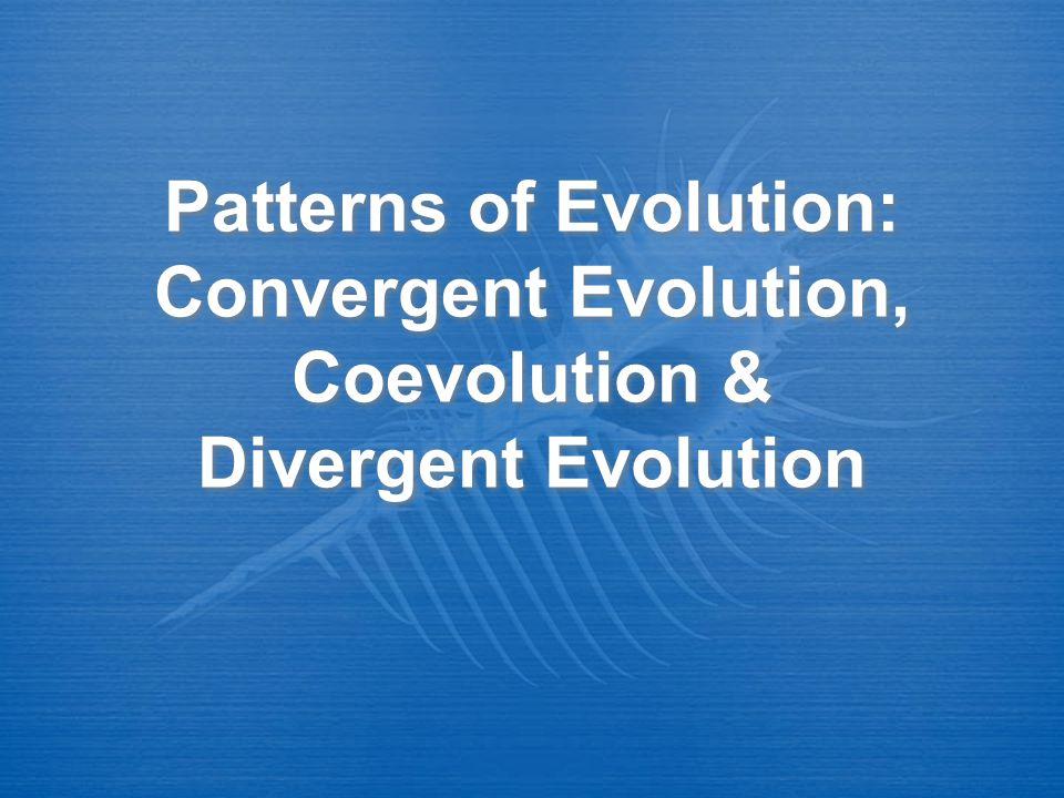 Patterns of Evolution: Convergent Evolution, Coevolution & Divergent Evolution