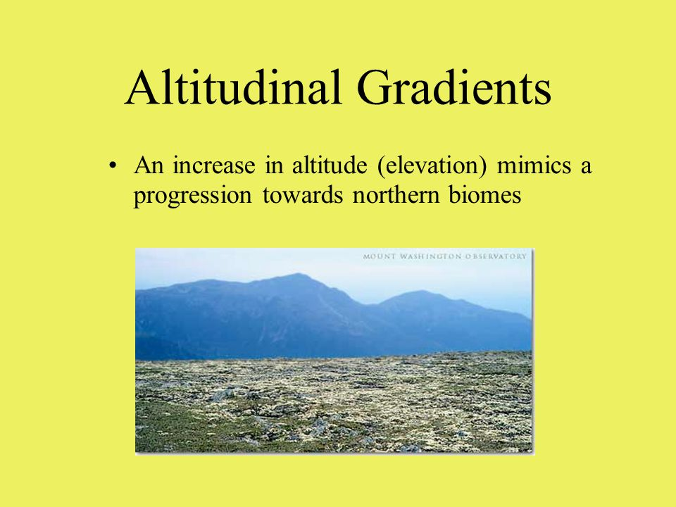 Altitudinal Gradients An increase in altitude (elevation) mimics a progression towards northern biomes