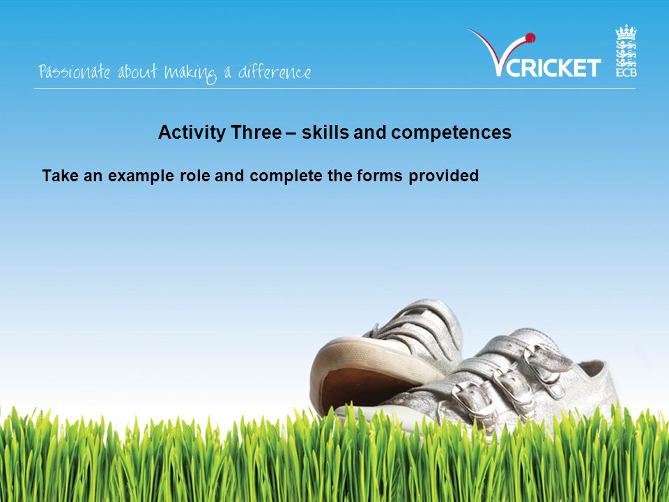 Activity Three – skills and competences Take an example role and complete the forms provided